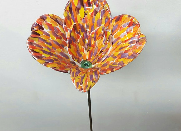 Large Orange Speckled Lily