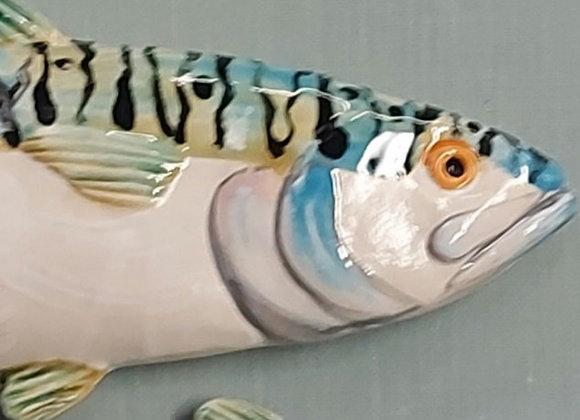 Large Wall Hanging Mackerel, 50 cm long