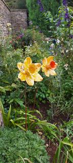 Large Yellow Daffodil Garden Sculptures by Renee Kilburn Ceramics. 1m tall.