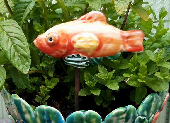 Goldfish Plant Pot Decoration