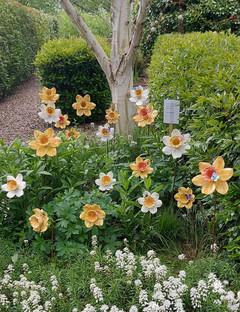 Renee Kilburn Ceramics Daffodils at Show