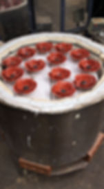 Decorated poppies.jpg