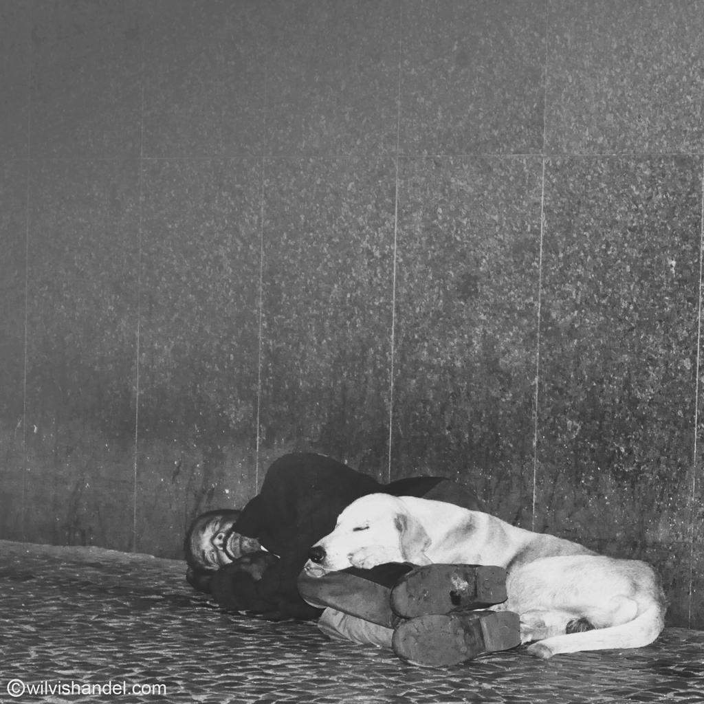 Wilvis Handel Fotografia Alternativa (24).JPG