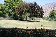 Cashmere Care Center Back Lawn.jpg