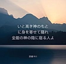 1623637660771_1280x1280.jpg