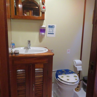 Bathroom in the boat.jpg