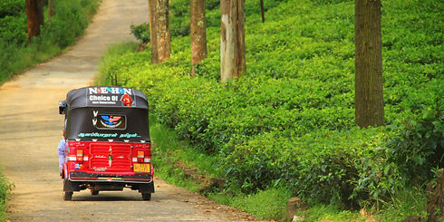 Tuk Tuk Sri Lanka.jpg