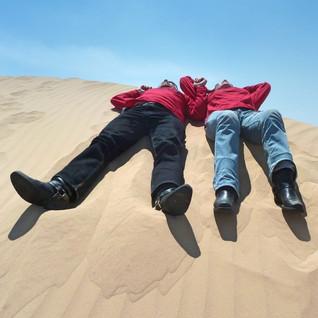 Resting on dunes.jpg
