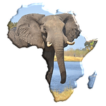Africa Tours.png