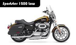 Sportster 1200 Low.jpg