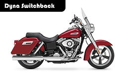 Dyna Switchback.jpg