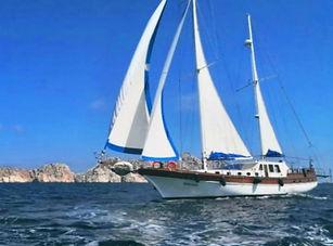 Ms Neslisah sailing.jpg