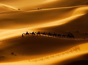 Africa adventure!.jpg