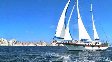 Sailing Tours.jpg