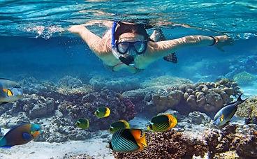 Snorkeling_Fotor.jpg
