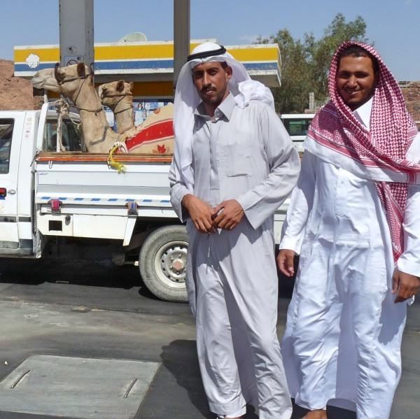 Camel transporters.jpg