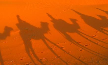 03 Camelride.jpg