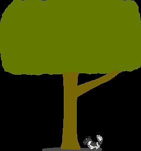 写真屋ホルトノキ ロゴ