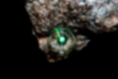 DeepTimeSisyphus_1.jpg