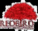 RedBird Capital Partners.png