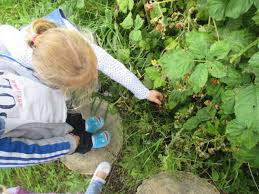 Volunteers give nursery garden a tidy