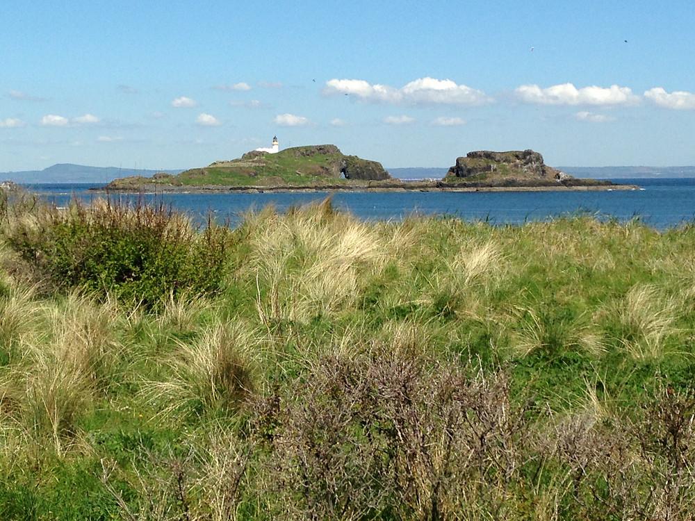 Fidra Island, Treasure Island