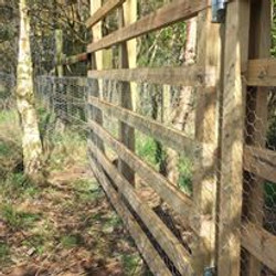 Fencing-with-rabbit-netting