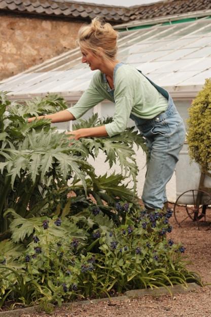 The Lady Gardener, North Berwick