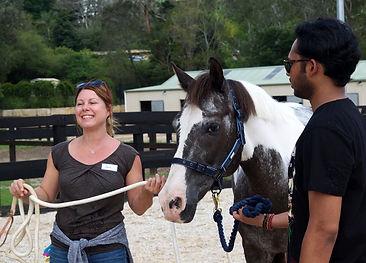 horse 21.jpg