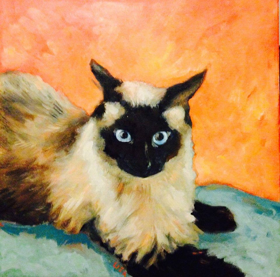 Mavi the Siamese Pet Portrait 24 x 24 inches