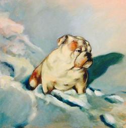 Luke the English Bulldog Pet Portrait 24 x 24 inches oil on canvas