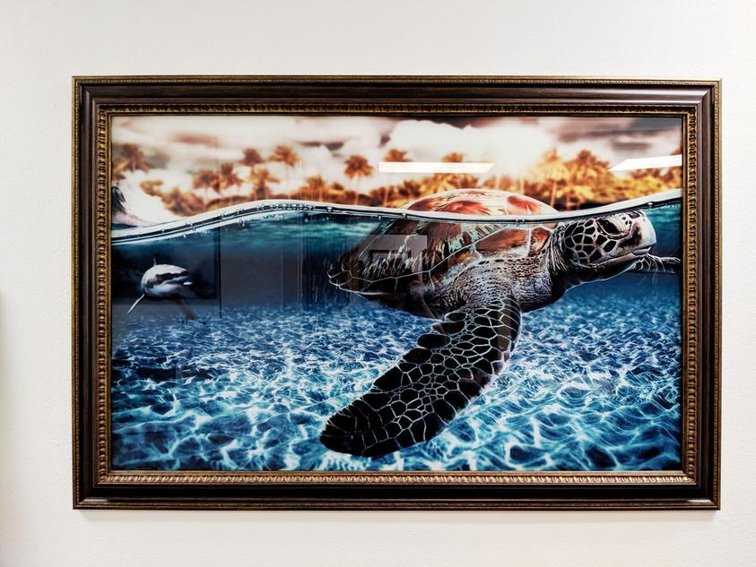 Plexiglass Sea Turtle