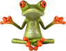 FROG 10.png