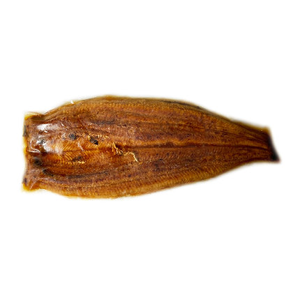 優廚 - 鰻魚 (大)