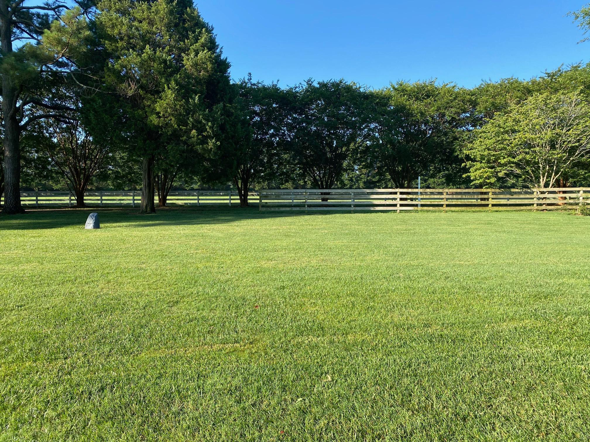 Mitigate & Eliminate Lawn Disease