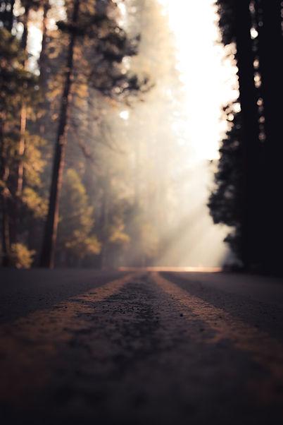 Mountain-Road-Sunlight-Low-Angle.jpg