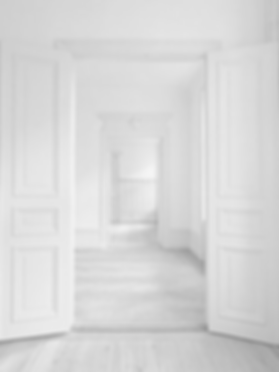white doors w_b.png