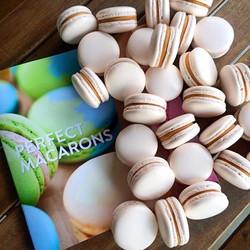demo day macarons