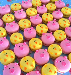 piggy and chick macarons_edited