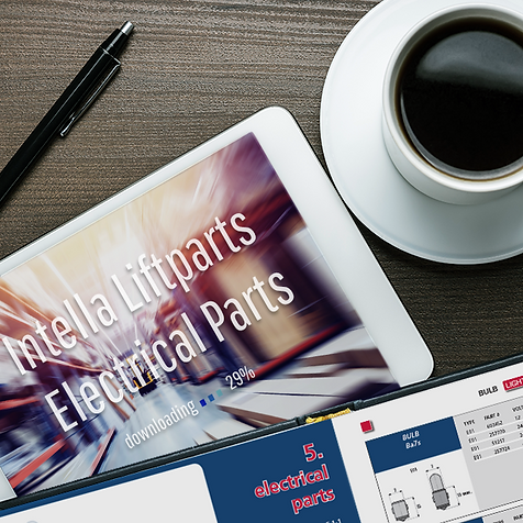 H5 Offline catalog Intella website elect