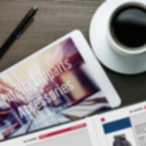 H1 Offline catalog Intella website acces