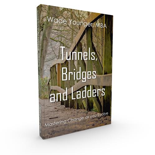 Tunnels Bridges & Ladders - Mastering change as you evolve