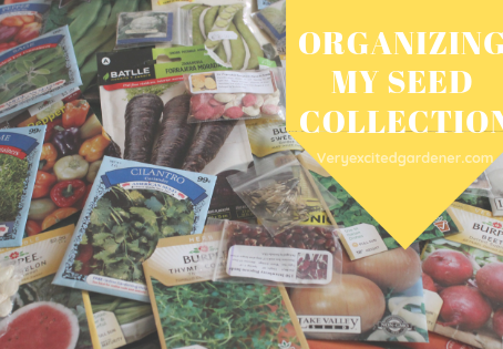 Organizing My Seed Collection
