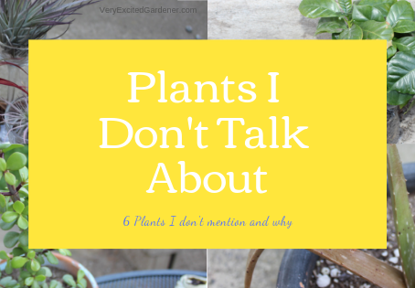 Plants that I Don't Mention