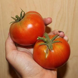 First Fruit.JPG