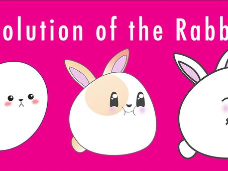 Rabbit Evolution