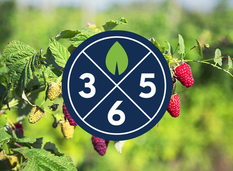 Plants365 Ltd has just been launched