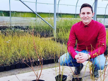 Plants365 takes on new nursery site to fuel further expansion