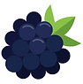 blackberry_icon.png