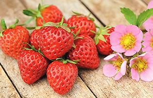 just-add-cream-strawberry.png